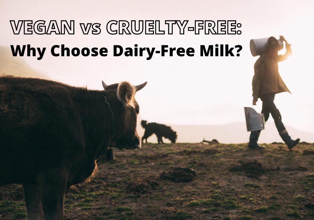 Vegan Vs Cruelty-Free: Why Choose Dairy-free Milk?