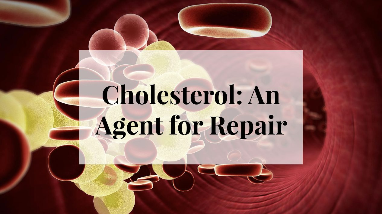 Cholesterol: An Agent for Repair